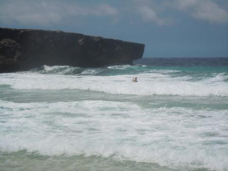 Alex swimming near Moro