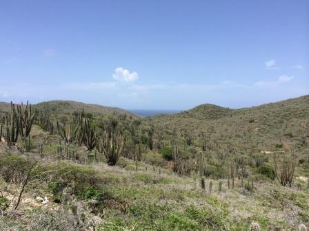 View from Arikok Hill
