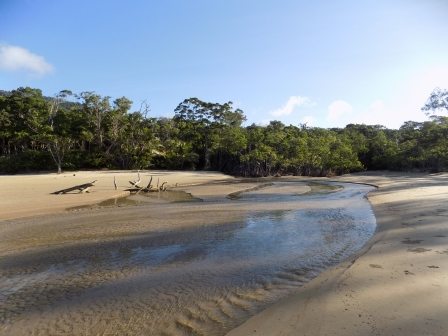 Where the Daintree River meets the Coral Sea