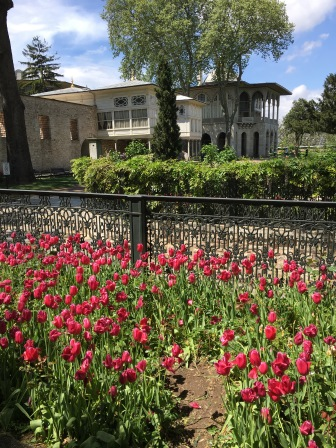 Tulips in the Topkapi Palace