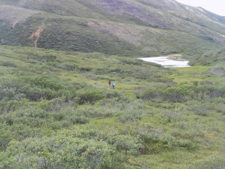 Hiking in the backcountry